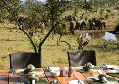 Privát szafari Dél-Afrika
